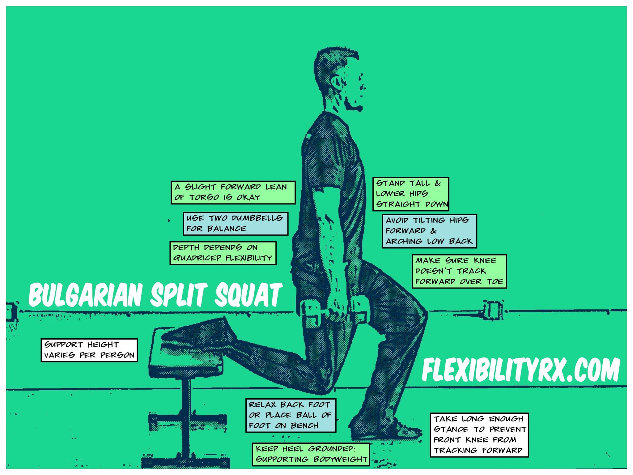 Single Leg Exercises Bulgarian Split Squat