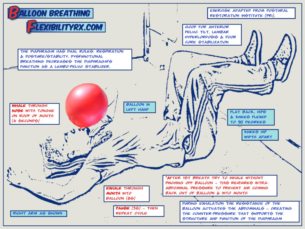 Balloon Breathing for Core Stability   FlexibilityRx ...